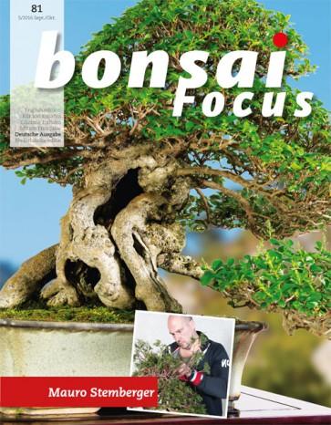 Bonsai Focus DE #81