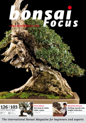 Bonsai Focus EN #103/#126