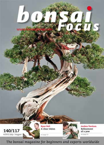 Bonsai Focus EN #117/#140