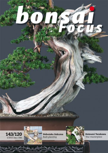 Bonsai Focus EN #120/#143