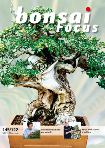 Bonsai Focus EN #122/#145