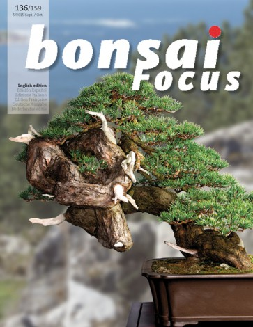 Bonsai Focus EN #136/#159