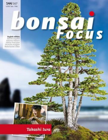 Bonsai Focus EN #144/#167