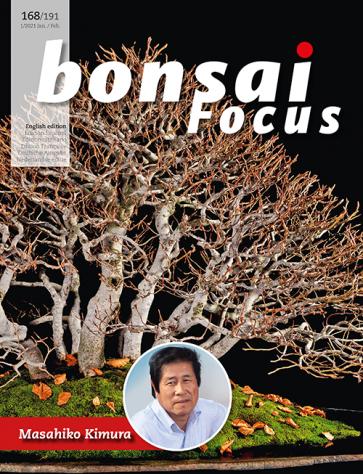 Bonsai Focus EN #168/#191