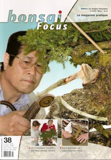 Bonsai Focus FR #38