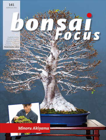 Bonsai Focus NL #141