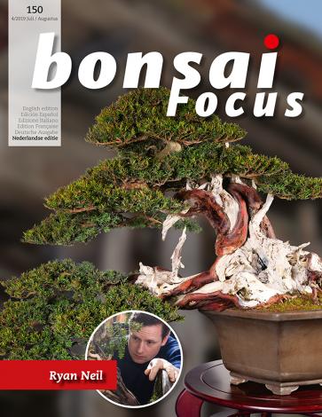 Bonsai Focus NL #150