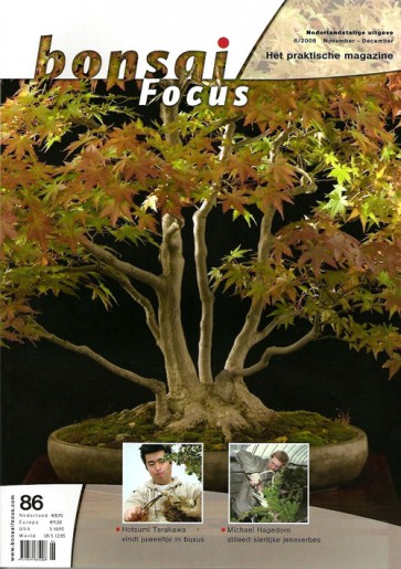 Bonsai Focus NL #86