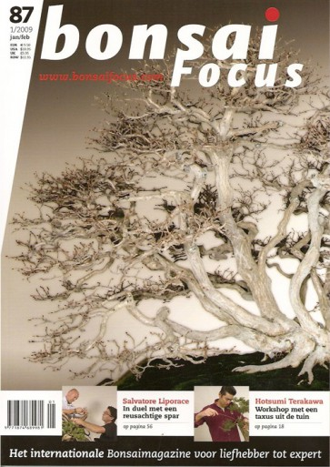 Bonsai Focus NL #87