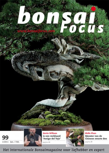 Bonsai Focus NL #99