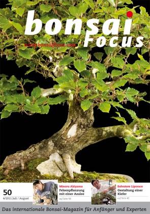 Bonsai Focus DE #50
