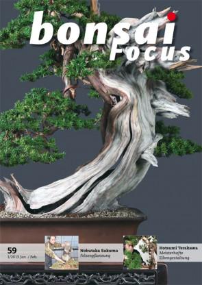 Bonsai Focus DE #59
