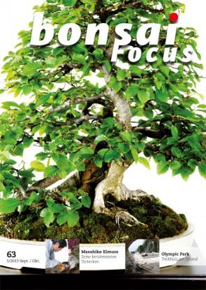 Bonsai Focus DE #63