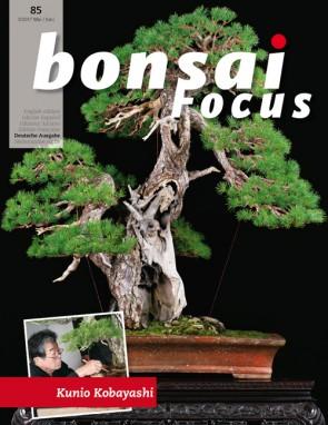 Bonsai Focus DE #85