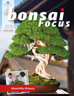 Bonsai Focus DE #88