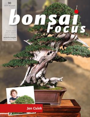 Bonsai Focus DE #90