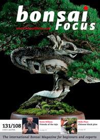 Bonsai Focus EN #108/#131