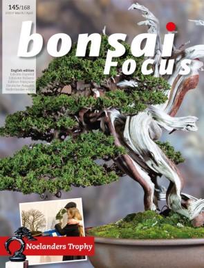 Bonsai Focus EN #145/#168