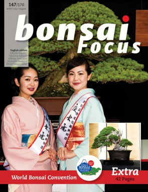 Bonsai Focus EN #147/#170