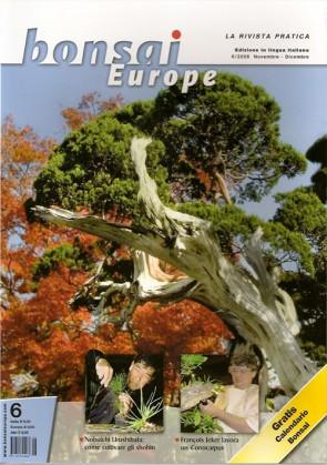 Bonsai Europe IT #06