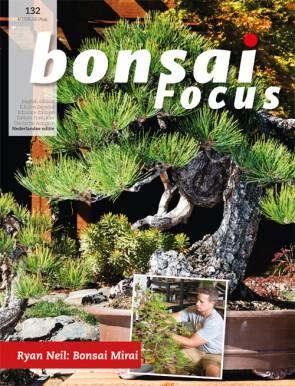 Bonsai Focus NL #132