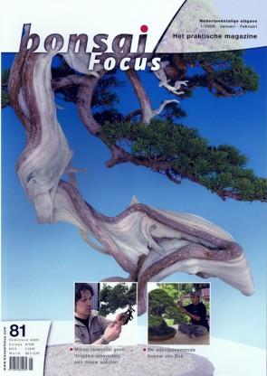 Bonsai Focus NL #81