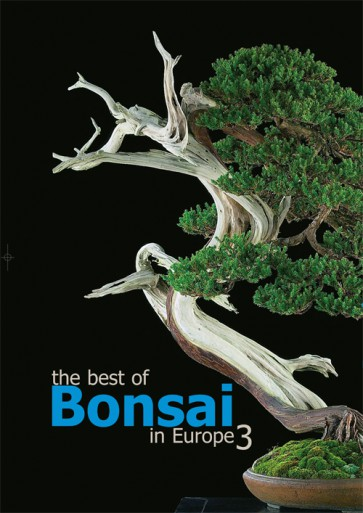 The best of Bonsai in Europe #3