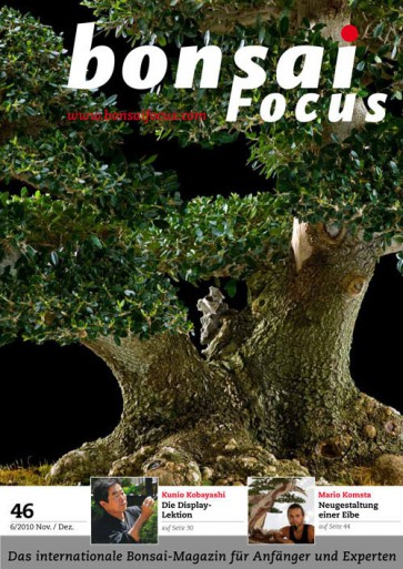 Bonsai Focus DE #46