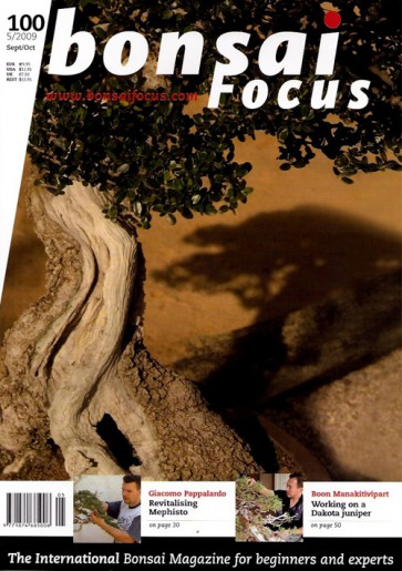 Bonsai Focus EN #100