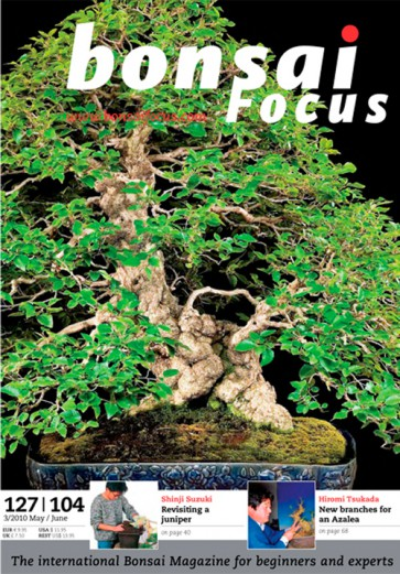 Bonsai Focus EN #104/#127