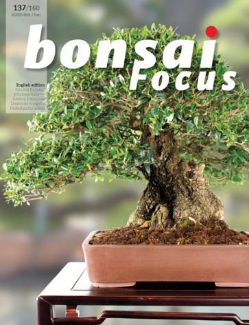 Bonsai Focus EN #137/#160