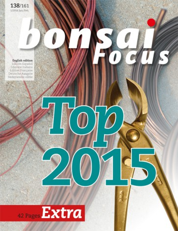 Bonsai Focus EN #138/#161
