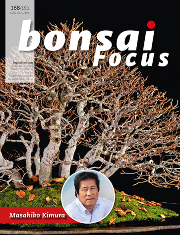 Bonsai Focus EN #168/#191