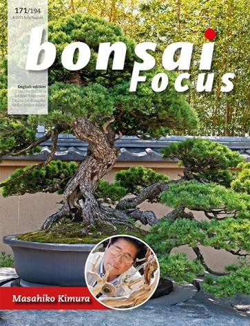 Bonsai Focus EN #171/#194