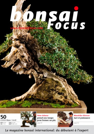 Bonsai Focus FR #50