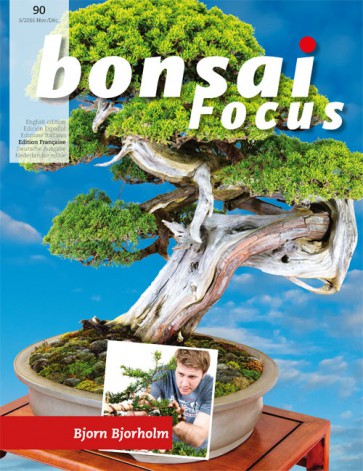 Bonsai Focus FR #90