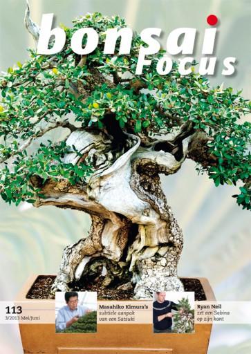 Bonsai Focus NL #113