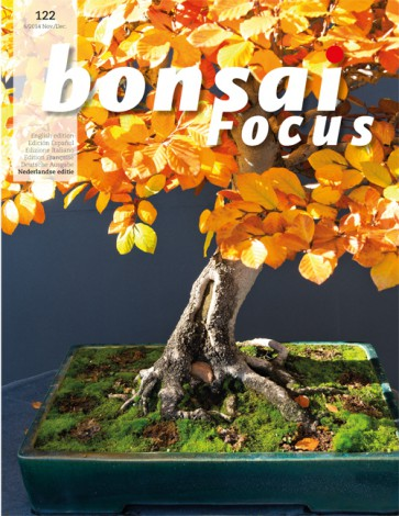 Bonsai Focus NL #122