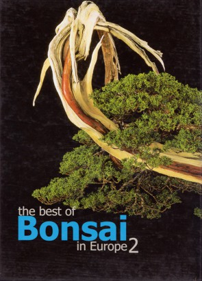 The best of Bonsai in Europe #2