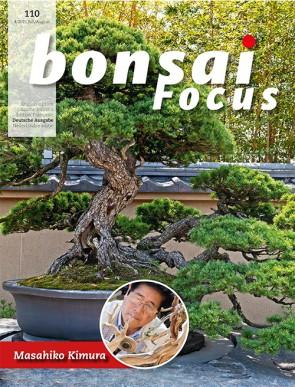 Bonsai Focus DE #110