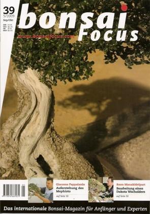 Bonsai Focus DE #39