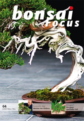 Bonsai Focus DE #64