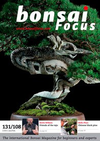 Bonsai Focus EN #108/#131