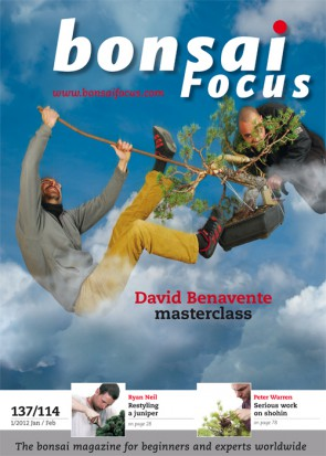 Bonsai Focus EN #114/#137