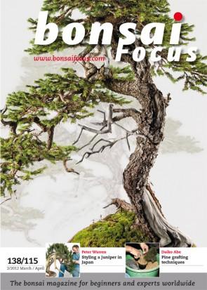 Bonsai Focus EN #115/#138