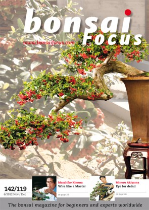 Bonsai Focus EN #119/#142