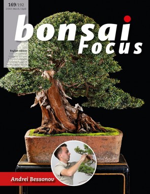 Bonsai Focus EN #169/#192