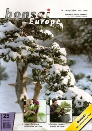 Bonsai Europe FR #25