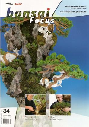 Bonsai Focus FR #34