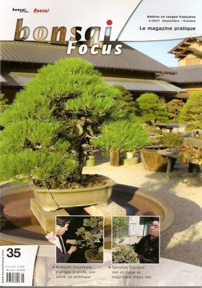 Bonsai Focus FR #35